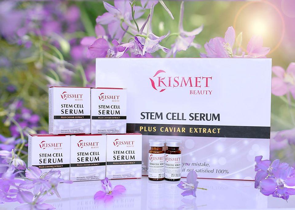 Tế bào gốc nội sinh kismet